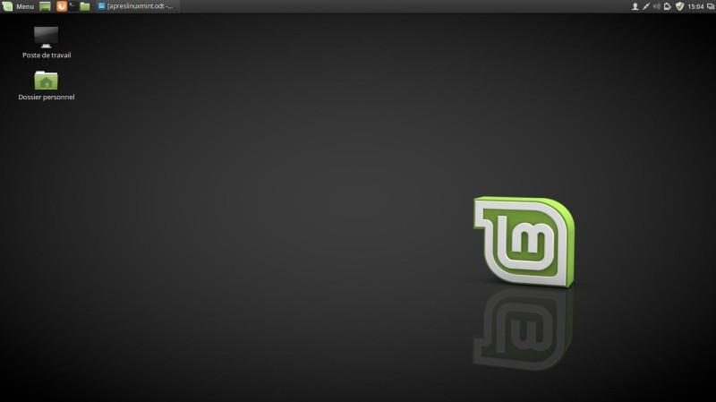 Un muelle para Linux Mint 18 4