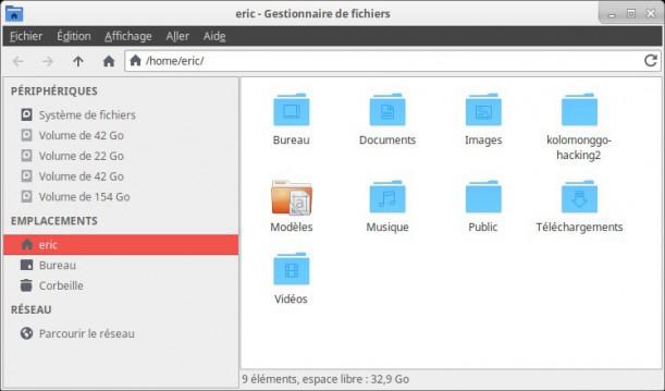Cambiar el tema y los iconos en Xubuntu 8