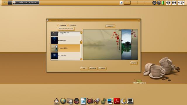 Bodhi Linux 2.1.0 nueva versión 4