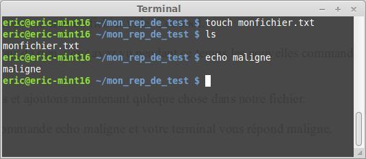 El terminal Linux para principiantes la suite 44