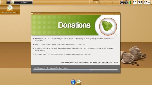 Instalación de Bodhi Linux en imágenes 13