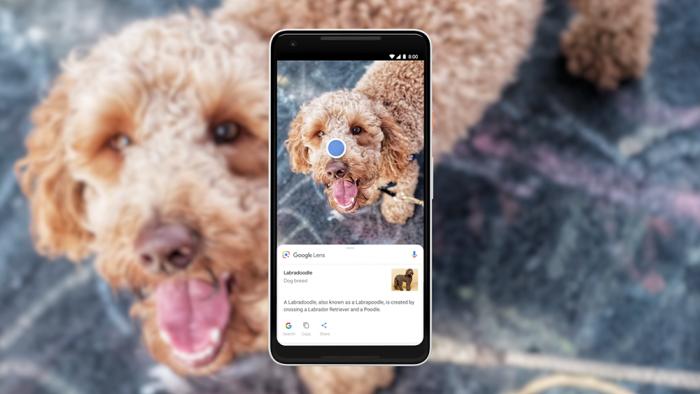 Google Lens estará disponible en portugués hasta finales de mayo. 1