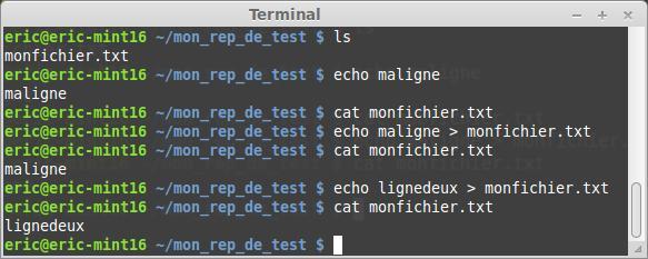 El terminal Linux para principiantes la suite 48