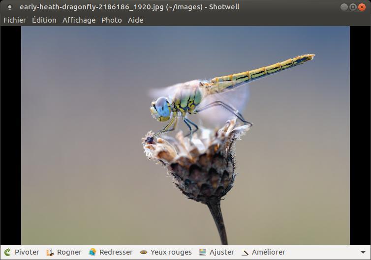 Ubuntu Mate - Versión 17.04 - Descargar - Probar - Instalar 9