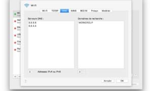 Cambiar el DNS de tu Mac (macOS / Mac OS X)