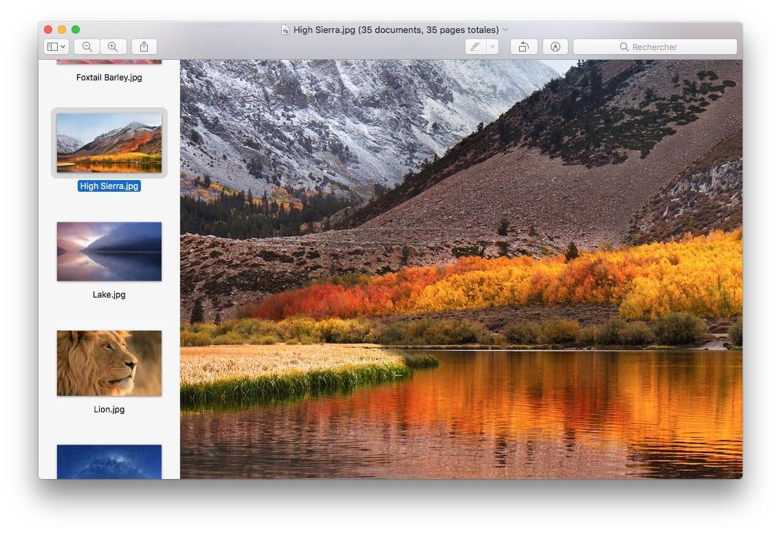Abrir todas las imágenes en una ventana con la vista previa de Mac