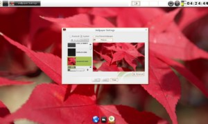Bodhi Linux, cambiar el fondo de pantalla