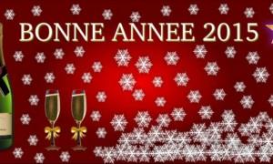 Crea tu propia tarjeta de felicitación de Año Nuevo