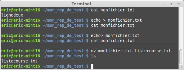 El terminal Linux para principiantes la suite 49