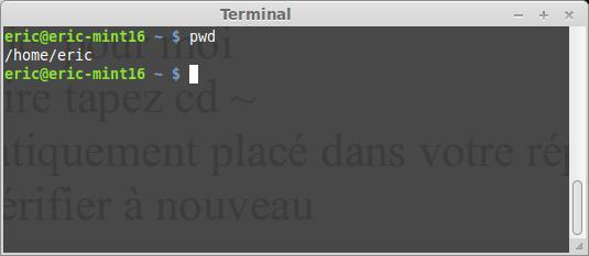 El terminal Linux para principiantes la suite 37