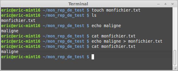 El terminal Linux para principiantes la suite 47