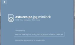 Simplemente encripta los archivos desde tu navegador