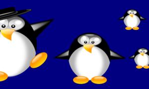 Elija su distribución de Linux