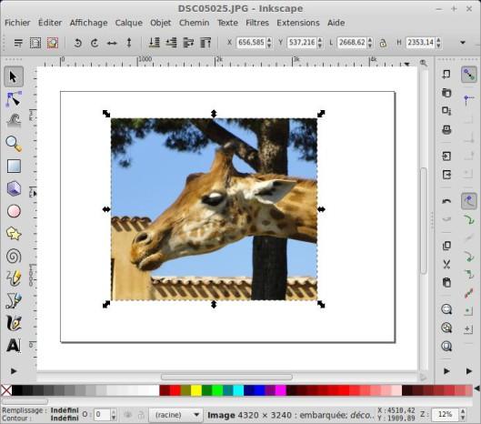 Recorte una foto o imagen con Inkscape. 7