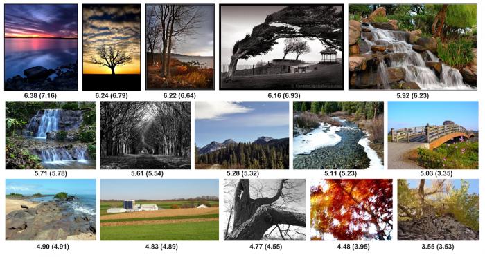 Google AI puede predecir si a los humanos les gustará una foto o no. 1