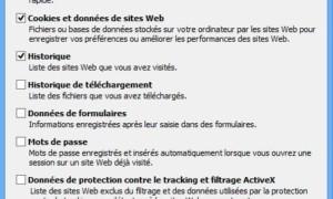 Vaciar los archivos temporales de Internet Explorer