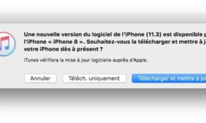 Actualización de iOS 11.3 iPhone, iPad, iPod touch (IPSW)