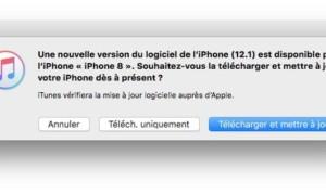 iOS 12.1 : actualización para iPhone, iPad, iPod (IPSW)