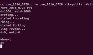 Un nuevo defecto de 0 días afecta a Linux y Android