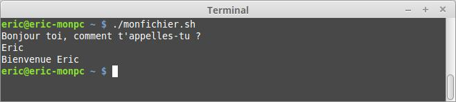 El terminal para principiantes - Un script
