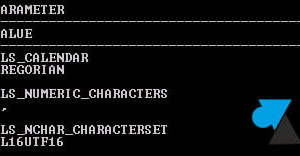 Oracle: ver el juego de caracteres