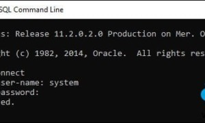 Descargue e instale gratuitamente el servidor de Oracle Database Express
