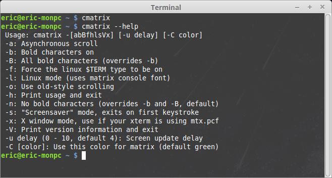 El terminal para la diversión al estilo Matrix