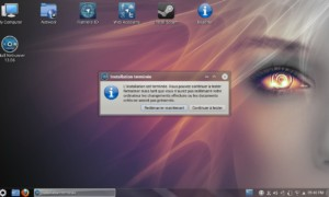 NetRunner 13.06, instalación