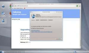 ¿Qué navegador en Linux?