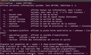 ¿Cuál es la versión del kernel de Linux en mi PC?