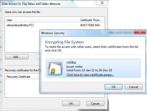 Cómo abrir un archivo cifrado si se niega el acceso en Windows