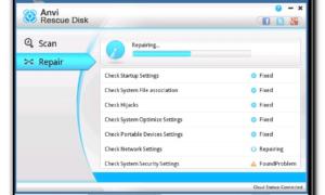 Desinstalación y eliminación de Ransomware con Anvi Rescue Disk para Windows