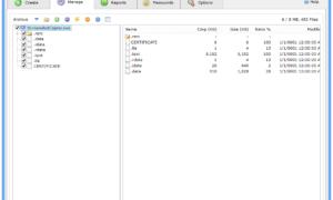 Descargar Bitser para Windows - Software gratuito de archivo y copia de seguridad