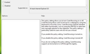 Habilitar el Soporte de Navegación de Caret en Internet Explorer usando Regedit o Gpedit