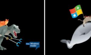 Descargar Ninja Cat Background, Bloquear imágenes de pantalla para Windows 10 desde Microsoft