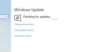 En caso de que usted revise manualmente las actualizaciones o espere a que le sean ofrecidas