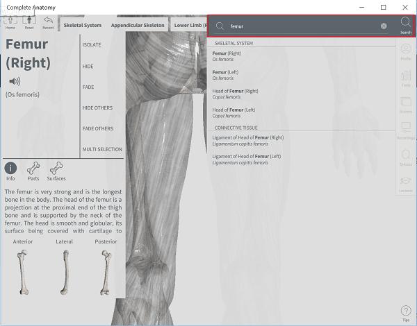Windows 10 Complete Anatomy App es una descarga que merece la pena