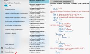 Cómo habilitar y utilizar Diagnostic Data Viewer en Windows 10