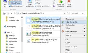 Desactivar o desactivar el corrector ortográfico y la corrección automática en Windows 10