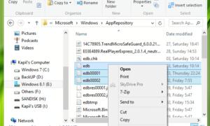 Corrección: Algo pasó y la tienda de Windows ya no funciona.