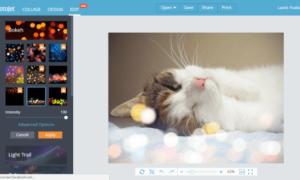 Edite imágenes y fotos online gratis con Fotojet Online Photo Editor