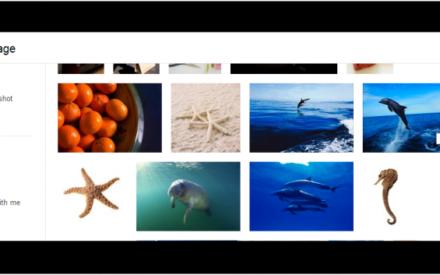 Cómo utilizar Free Stock Images desde Google Drive