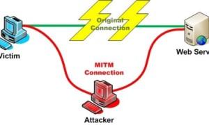 Seguridad HTTPS y Spoofing - ¿Quién es ese hombre del medio?