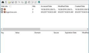 Cómo ver y eliminar cookies en el navegador Chrome, Firefox, Edge, IE