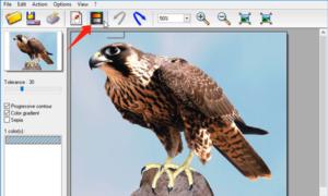Reemplazar el color de la imagen con freeware Photo Black & Color