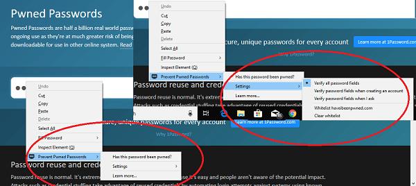 Complemento de contraseña para Firefox 1