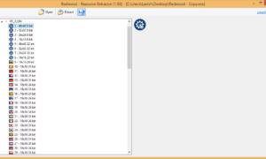 Extractor de recursos de secuoyas: Ver y extraer recursos de archivos EXE
