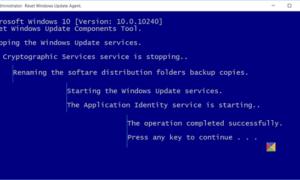 Restablecer el Agente de Windows Update a su valor predeterminado en Windows 10