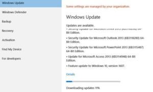 Hubo algunos problemas al instalar las actualizaciones, pero volveremos a intentarlo más tarde (0x800705b4)